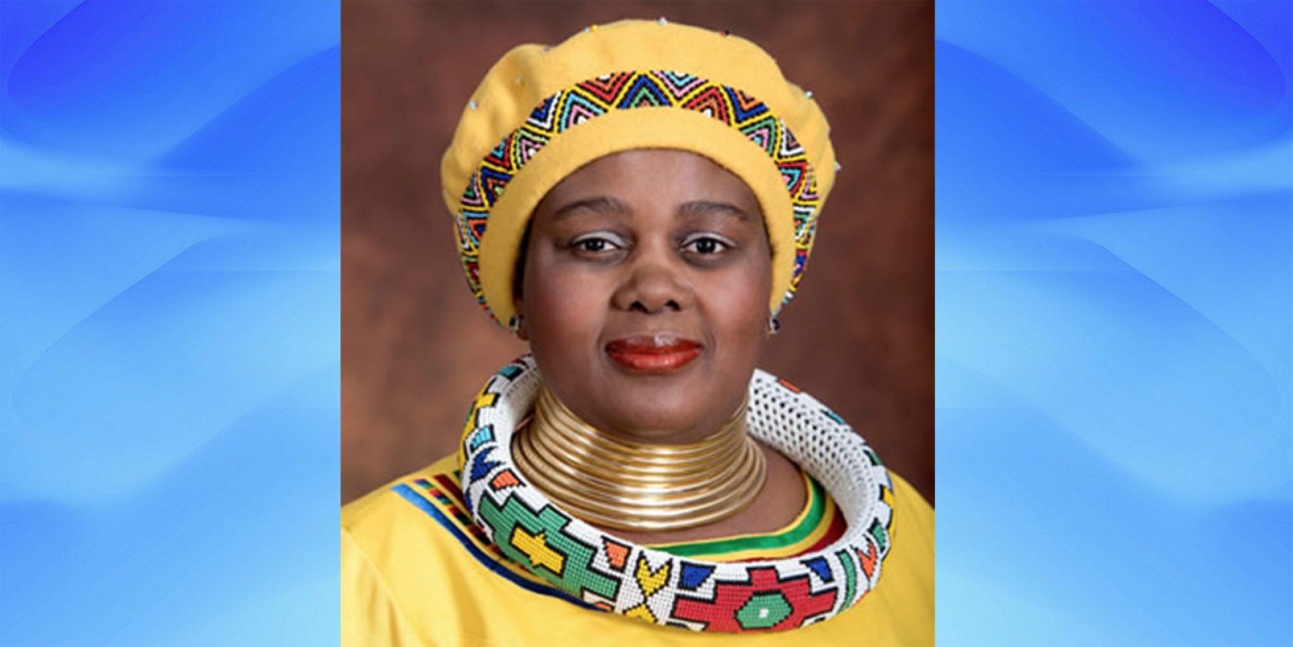 Minister of human settlements Mmamoloko Kubayi