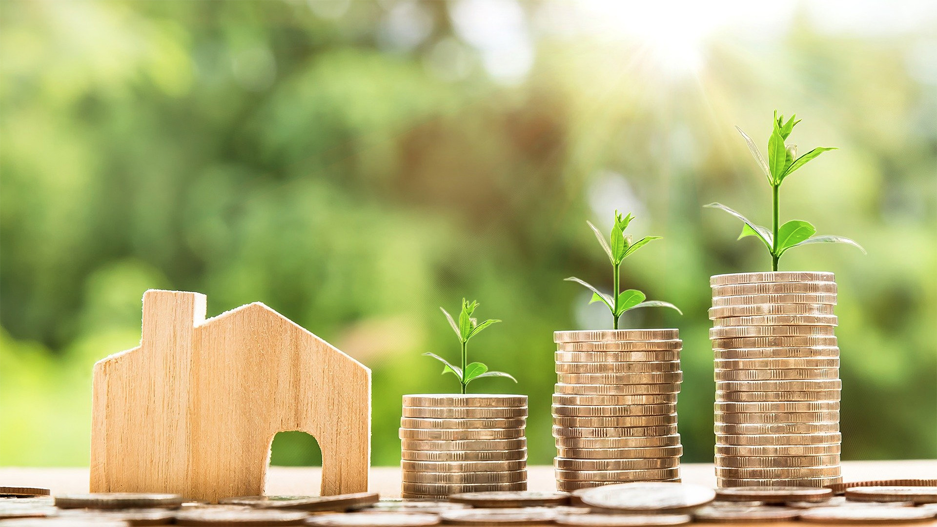 Property investment